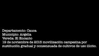 Campesino del Cauca es asesinado por el Ejército