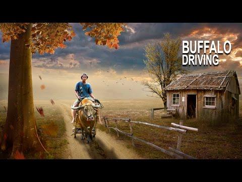 Buffalo driving -  Photoshop Manipulation Tutorial Effect