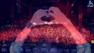 - AVICII - || AUSTRALASIA RECAP || AT NIGHT MANAGEMENT