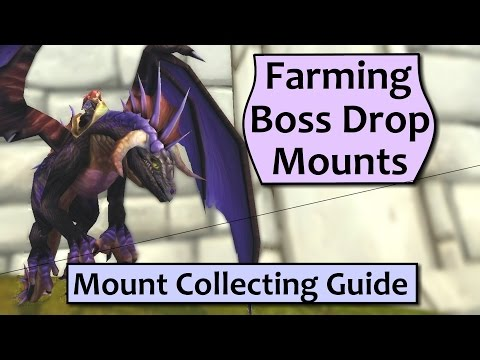 WoW Mount Collecting Guide - Farming Boss Drop Mounts Efficiently