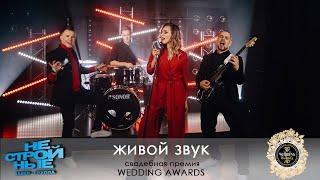 кавер-группа НЕСТРОЙНЫЕ  Wedding Awards 2017 | живой звук | главная свадебная премия