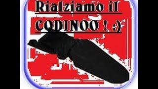 Piccolo trucchetto come rialsare il codino !!!  # Ferdinando MOTORS TV