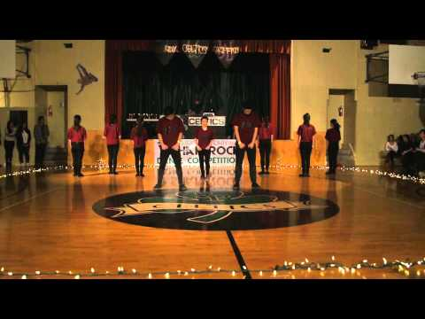 Shamrock Dance Competition 2014 - Act 2, Camera 1