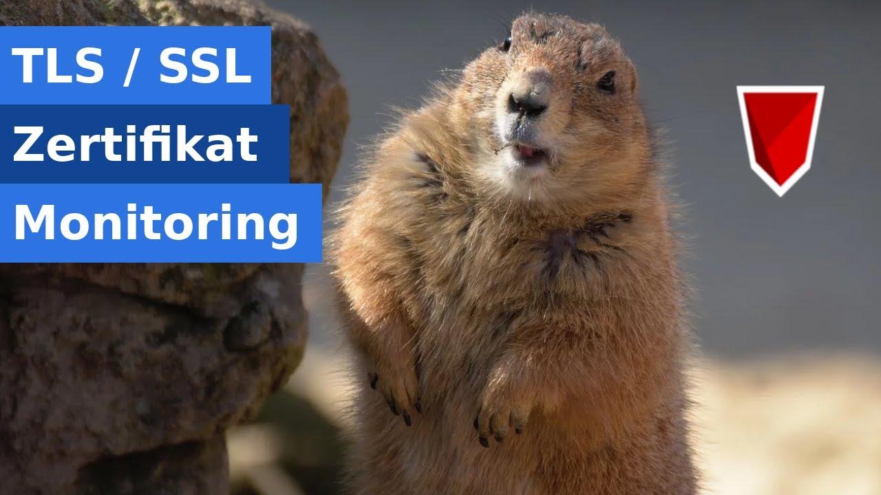 Monitoring von TLS/SSL-Zertifikaten mit Open-Source Tools