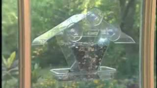 Aspects, Inc. Window Cafe Bird Feeder