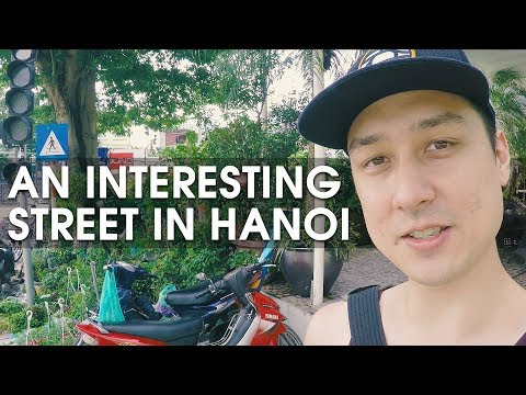 Plants, Pets, Art, and Wooden Furniture on Hoàng Hoa Thám Street - VIETNAM WALK