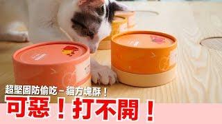 不怕蛋捲偷吃!超堅固包裝貓方塊酥來囉【好味貓鮮食商店】EP3