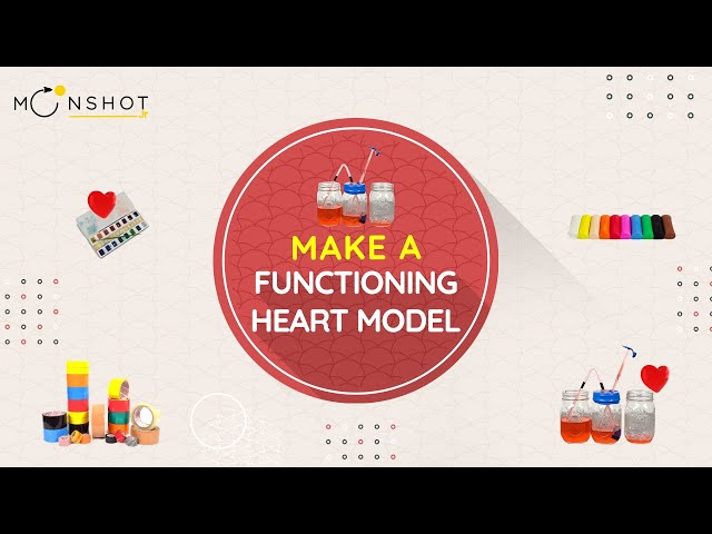 Make a Functioning Heart Model
