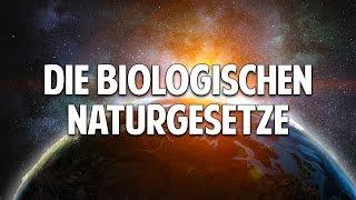 Jede Krankheit ist heilbar - Die biologischen Naturgesetze