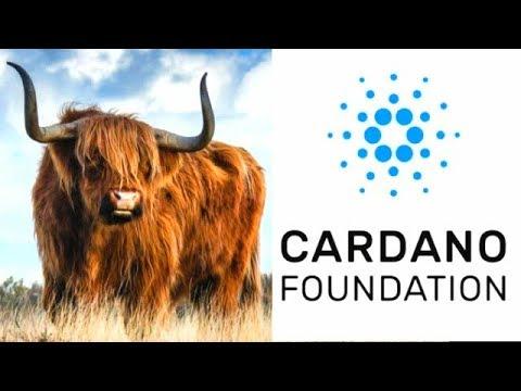 King Cardano Bullrun Looking Strong + ADA AION Collaboration Update