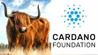 King Cardano Bullrun Looking Strong + ADA AION Collaboration Update