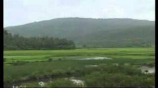 tor-bina-prabhu