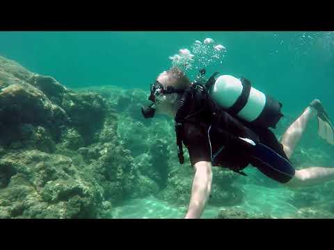 porto zorro scuba diving