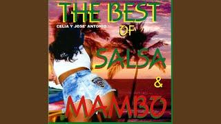 Mambo jambo