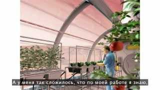 видео Создаем зимний сад в квартире своими руками: 11 фото