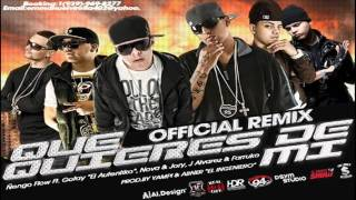 Que Quieres De Mi Official Remix Letra