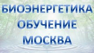 Биоэнергетика обучение москва
