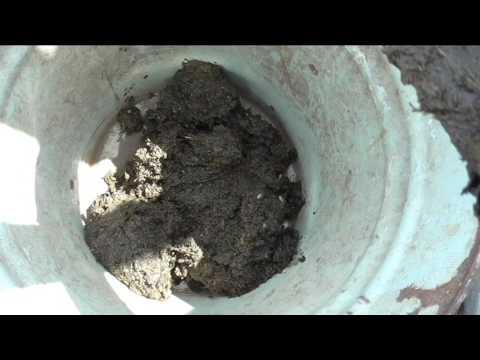 Приготовление раствора куриного помета для подкормок растений
