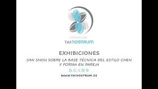 Encuentro de artes marciales chinas de Málaga 2009. Tainostrum