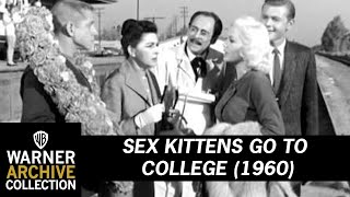 Sex Kittens go to College (Preview Clip)