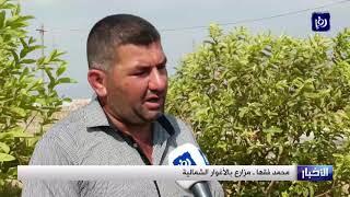 مزارعو الأغوار الفلسطينية مصير مجهول بعد تهديد نتنياهو ضم غور الأردن - (20-9-2019)