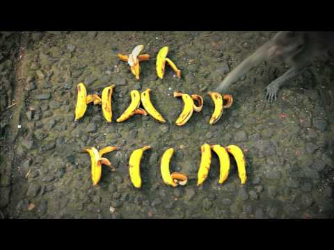画像: The Happy Film Titles www.youtube.com