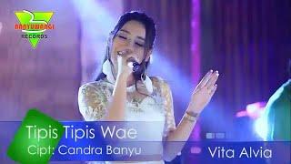 Download Mp3 Vita Alvia - Tipis Tipis Wae