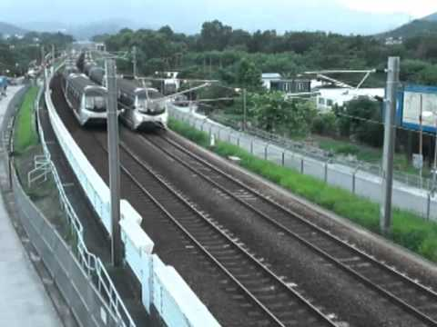 {ERL} Record the Local train @ Hong Lok Yuen & Kau Lung Hang