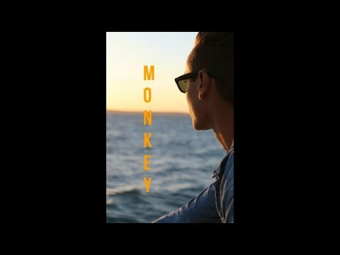 First VLOG! monkey MIA travel video