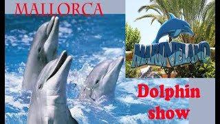 Dolphin show. Marineland Mallorca. Шоу дельфинов
