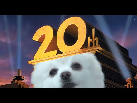 20TH CENTURY DOG