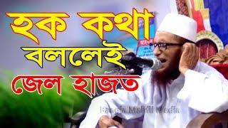 বক্তা হক কথা বললেই জেল হাজত মাওলানা হাবিবুর রহমান যুক্তিবাদী New Bangla Waz Mahfil