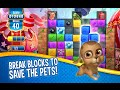 Pet Rescue Saga Android İos Free Puzzle Game GAMEPLAY VİDEO