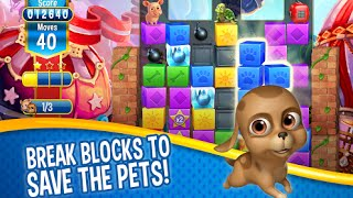 Pet Rescue Saga Android İos Free Puzzle Game GAMEPLAY VİDEO