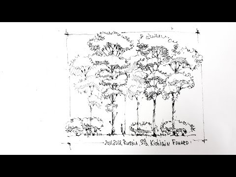 Landscape Graphics how to Draw simple coniferous Trees-Sketching, pines