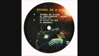 DJ Vinylgroover & Trixxy feat. Heidi - Wishing on a Star