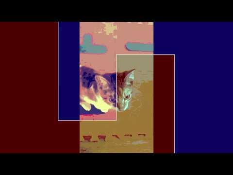 LEVON VINCENT  -  WORLD ORDER MUSIC Mp3
