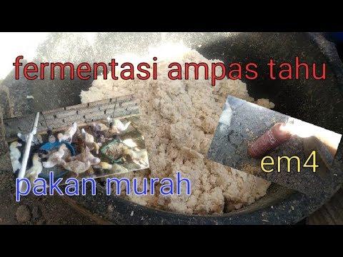 Fermentasi Ampas Tahu Dengan Em4