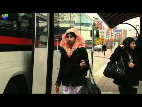 Borlänge, en invandrarstad