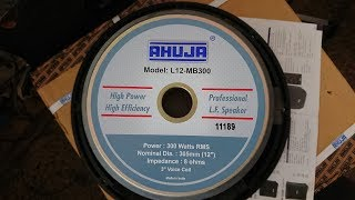 AHUJA L12-MB300 PROFESSIONAL PA SPEAKERS UNBOXING & REVIEW