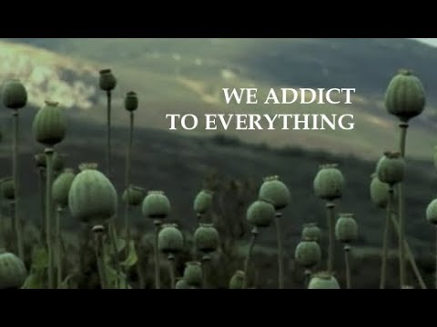 We Addict To Everything - Terence McKenna