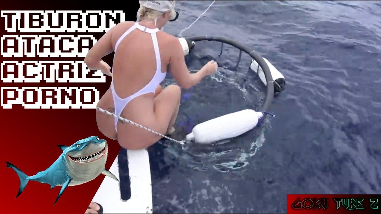Actriz Porno Es Mordida Por Tiburon actriz porno es mordida por tiburón - youtube