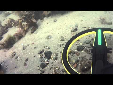 Underwater metal detecting Norway. #1 Gold ring!