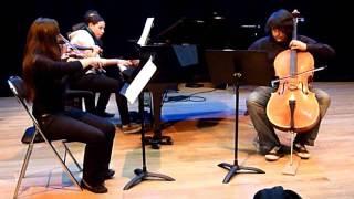 Trio opus 1 n°3 - finale prestissimo - Beethoven