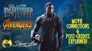 BLACK PANTHER Post-Credits Scenes & AVENGERS: INFINITY WAR Connections Explained and Detailed