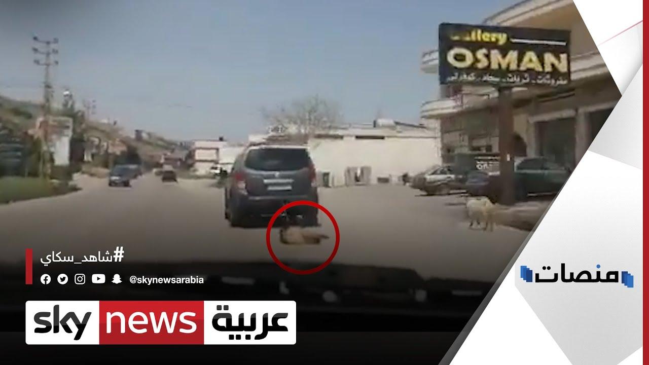 فيديو صادم لتعذيب كلب يثير السخط في #لبنان.. وأسرة المتهم تبرر | #منصات  - 18:59-2021 / 4 / 21