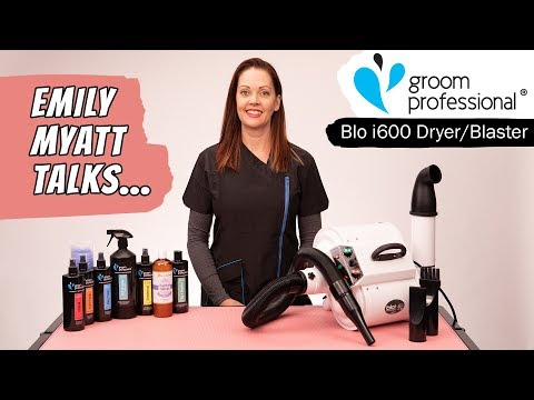 Blo i600 Dryer and Blaster