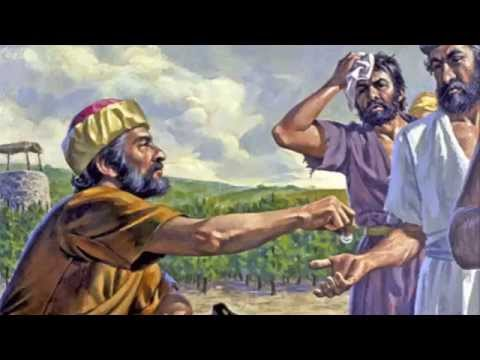 Image result for images of parable of the laborers in the vineyard