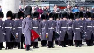 Welsh Guards St David's Day Parade Cardiff 2015