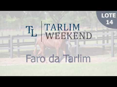 Lote 14 - Faro da Tarlim (Potros Tarlim)